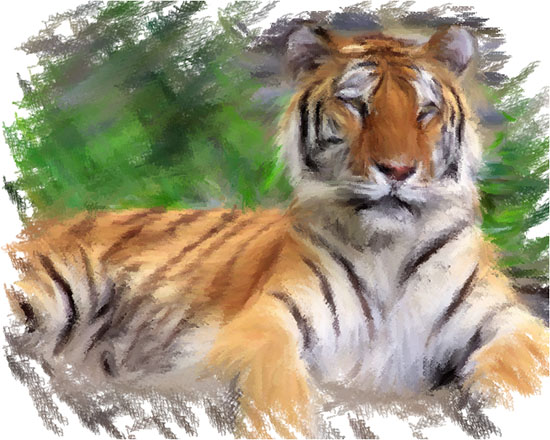 Tiger with no 3D Effect