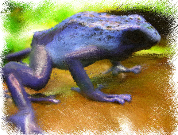 Blue Frog Painted GMX-PhotoPainter